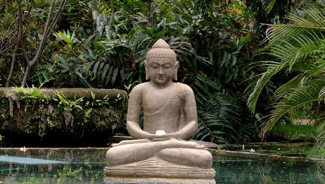 The Best 200 Hour Yoga Teacher Training Programs: Bali
