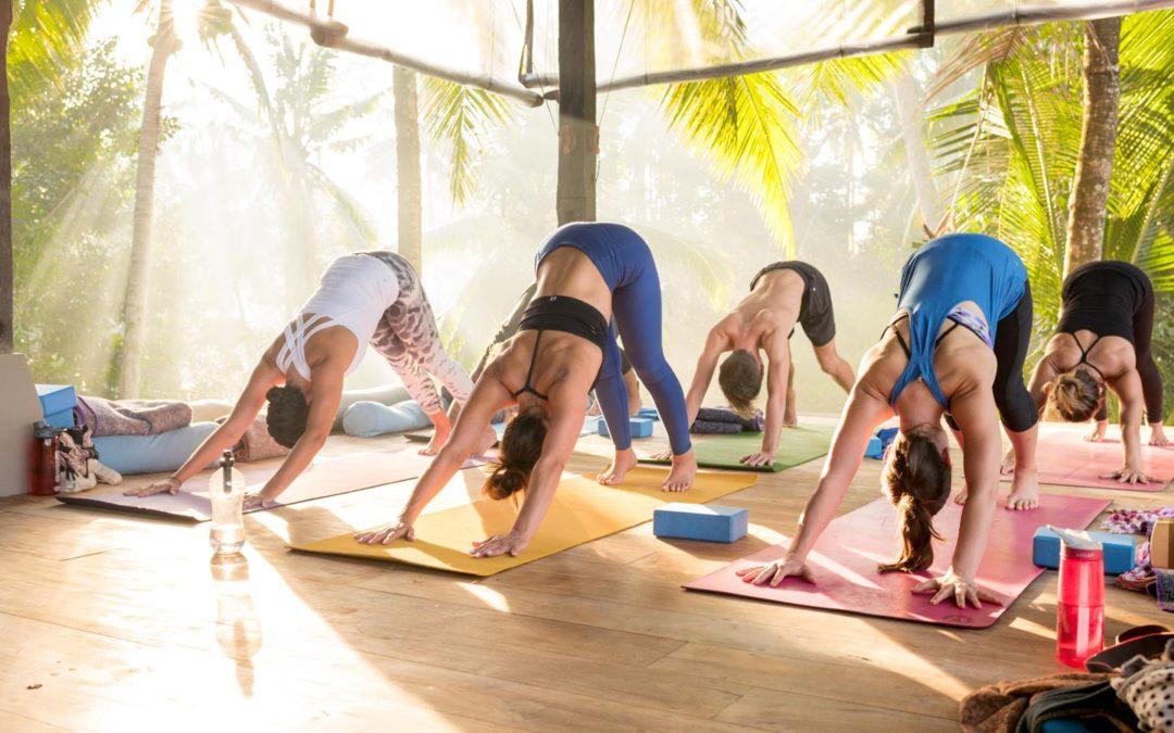 Am I ready for Yoga Teacher Training?