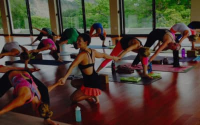 Yoga Teacher Training 101: What You Need to Know