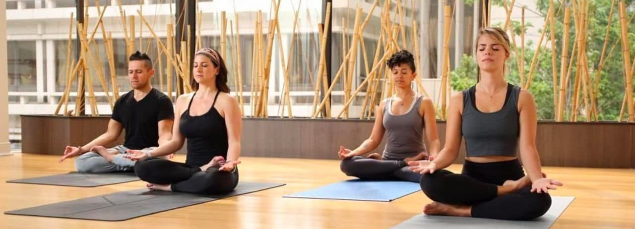 Best Yoga Teacher Trainings In The United States East West