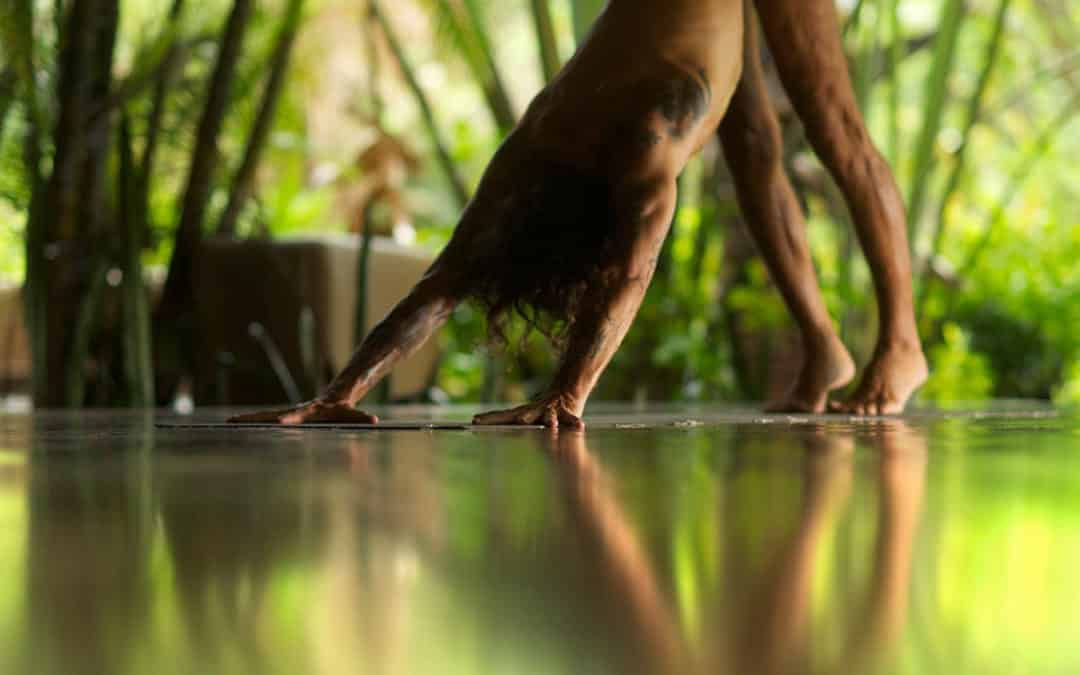 The Best 200 hour Yoga Teacher Trainings: Central America