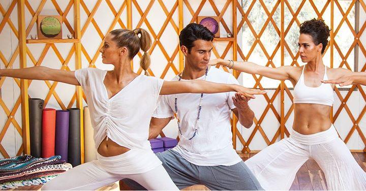 Top Yoga Teacher Trainings In Dallas East West